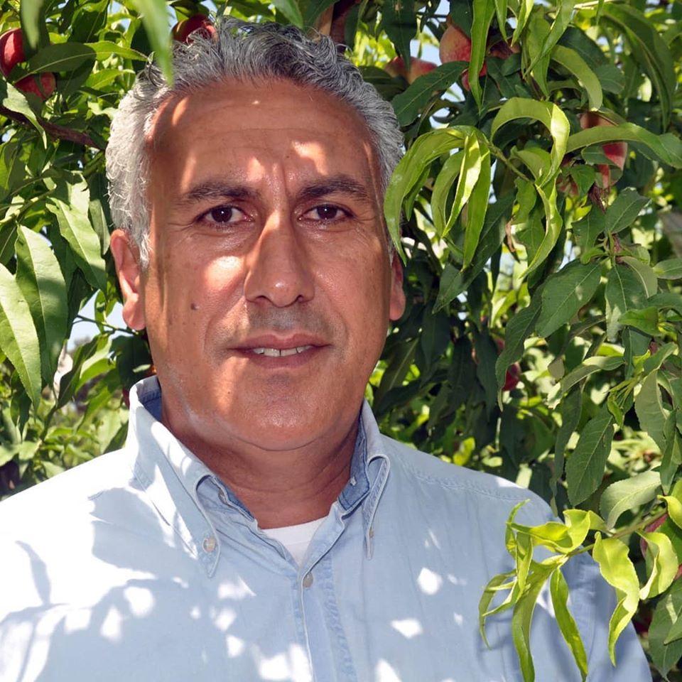Amik Ovası'nda üreticiler, çekirdekli meyvecilikte erkencilik avantajını kullanmak istiyor