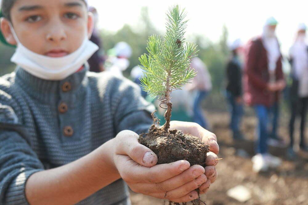Reyhanlı Eğitim Köyü'nde kalan Suriyeli yetim çocuklar  Hatay'a nefes olmak için fidan dikti