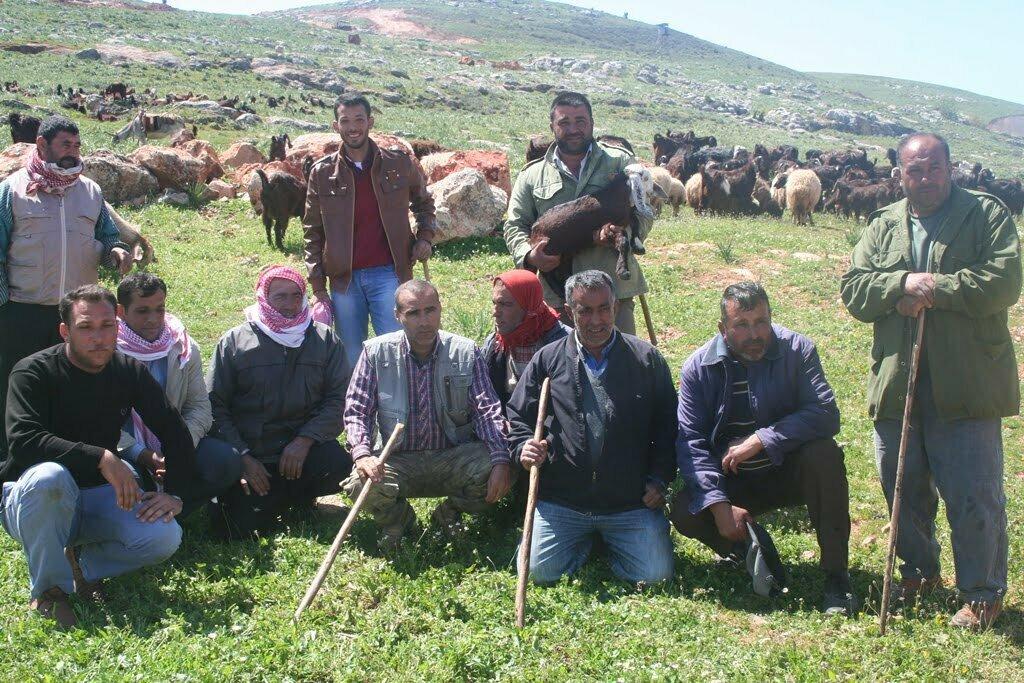 Reyhanlılı Çobanlar Sınırdaki Meranın Açılmasını İstiyor